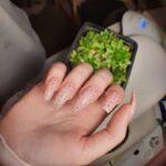 нарощення жіночих нігтів